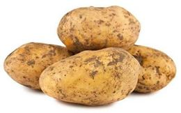 Picture of POTATOES BRUSHED LOOSE